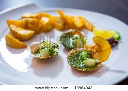 Scallops in shells with garlic butter on the plate