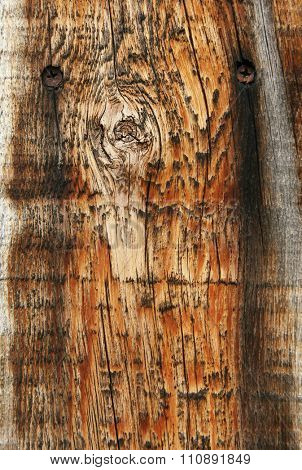 image from wood background series
