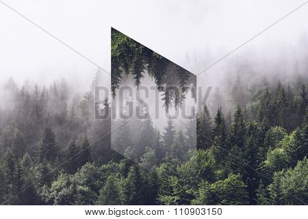 Atmospheric Scenic View of Alpine Evergreen Trees Shrouded in Heavy Fog with Reflection of Forest in Inverted Polygon in Center of Image