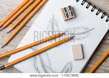 Close-up View Of Feather Sketch