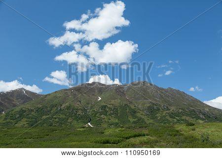 Lush Alaskan Mountains