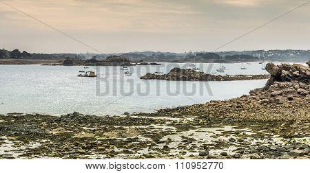 shoreline at low tide, Brittany, France