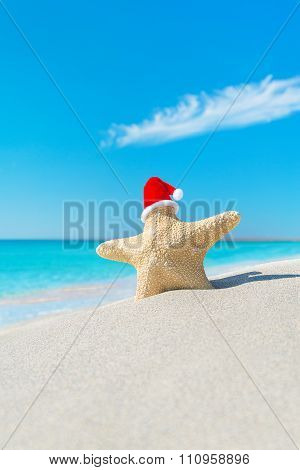 Sea-star In Red Santa Hat At Tropical Sea Beach.