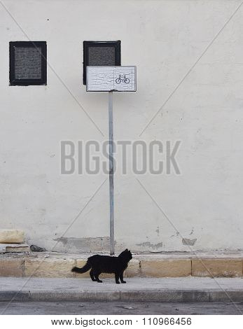 Black cat as symbol of bad luck, black cat like a object of bad sign