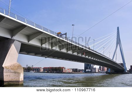 Erasmus Bridge In Rotterdam Netherlands Holland