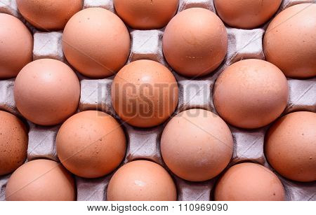 chicken Eggs, which were prepared for cooking.