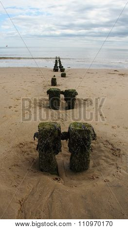 Groynes on the beach