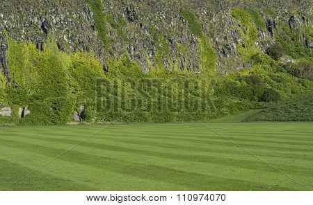 Well Kept Lawn Infront Of A Steep Cliff Overgrown With Heather. Textured Background.