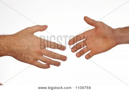 Two Hands On White Background