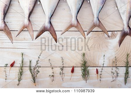Raw fish, Yellowtail, in a row