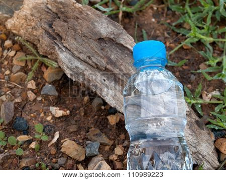 Drinking Water Nature