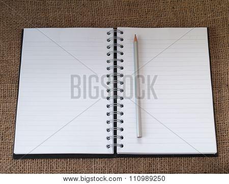 His Diary