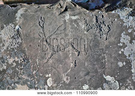Ancient Petroglyphs Found On The Site Kalbak-tash