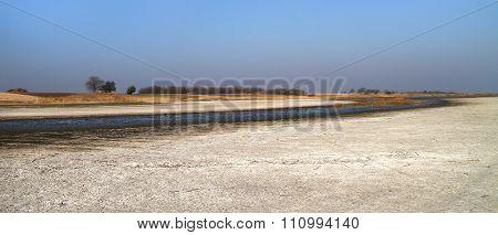 Salt Marsh Natural Reserve Slano Kopovo