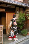 Geisha In Motion