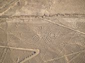 picture of geoglyph  - Aerial view of Nazca Lines in Peruvian Desert - JPG