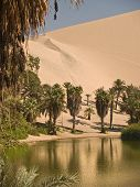stock photo of ica  - Huacachina Oasis in the Desert of Ica - JPG