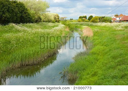 Stream through the countryside
