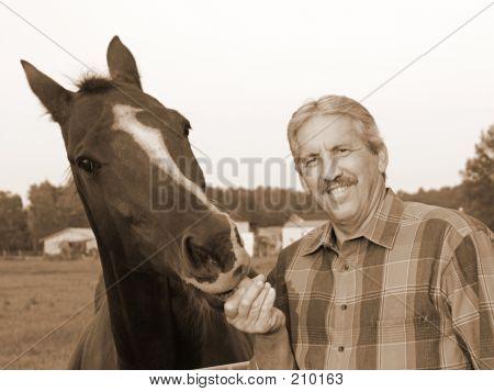 Farmer Feeds Horse