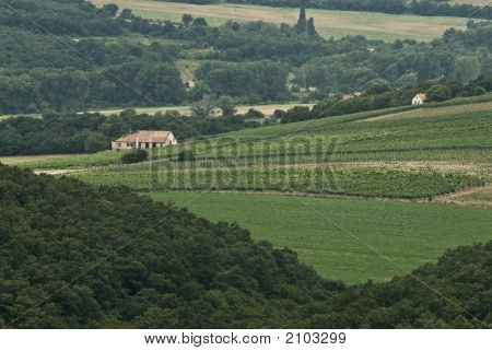 Idyllic Winery