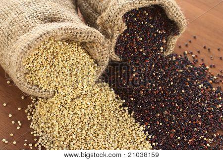 Raw Quinoa Grains