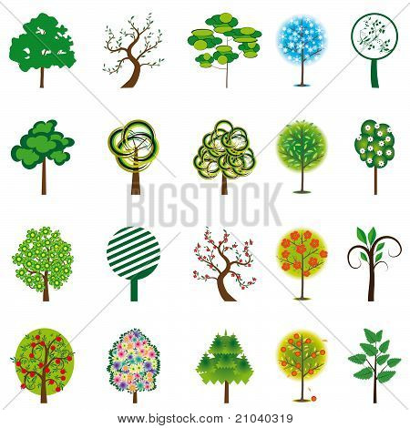 The Collection Of Trees