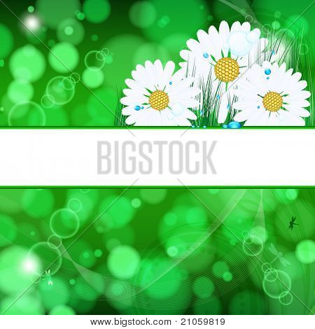 abstract background with daisies and grass and drops.