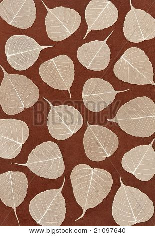 Skeletal leaves over brown handmade paper