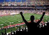 stock photo of victory  - Fan celebrating a victory at a American football game - JPG