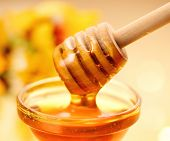 Honey dripping from honey dipper on yellow background. Thick honey dipping from the wooden honey spo poster