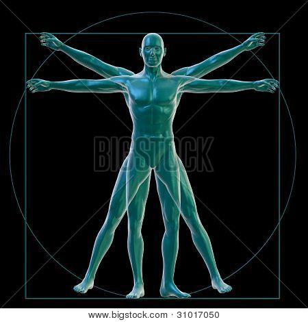 Vitruvian man on black
