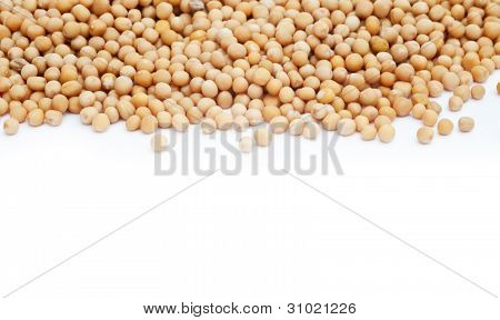 Mustard Seeds On White Background