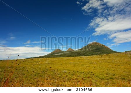 Tasmanian Highland