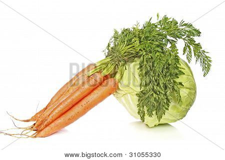 Cabbage And Carrot