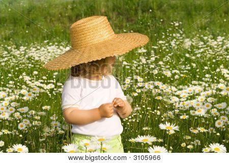 Little Girl On The Daisy Field