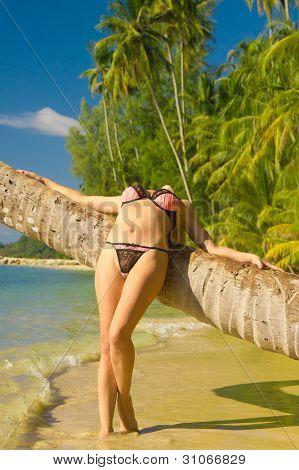 Exotic Hideaway Woman In Bikini