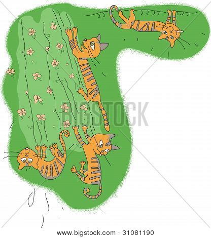 Funny cats on green curtain