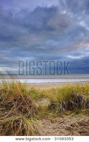 Grassy Sand Dunes During Sunset