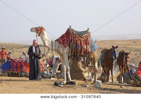 Egyptian bedouins in desert