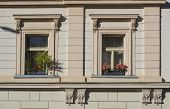 Detail Of Beige Facade Of Old Prague Tenement House Windows With Flower Boxes poster