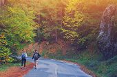 Rear View Of Young Couple Walking On Road Through Woods With Backpacks. Man And Woman Hiking In Fore poster