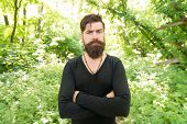 Stylish And Comfortable. Serious Stylish Hipster On Summer Outdoor. Bearded Man With Stylish Hair We poster