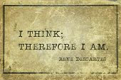 I Think; Therefore I Am - Ancient French Philosopher And Mathematician René Descartes Quote Printed  poster