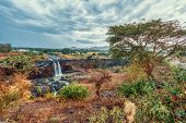 Beautiful View Of Blue Nile Falls Without Water In Dry Season. Fill On The Blue Nile River. Nature A poster