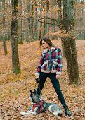 Best Friends. Girl Enjoy Walk With Husky Dog. Siberian Husky Favorite Pet. Animal Husbandry. Girl Pr poster