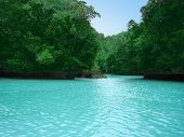 picture of tourist-spot  - The Milky Way Lagoon in Palau is one of the more interesting tourist spots in the region of the Rock Islands - JPG