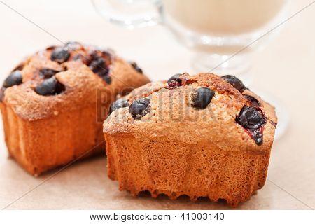 Schwarzen Johannisbeeren Kuchen