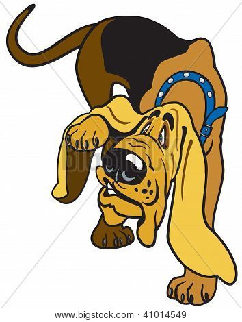 cartoon bloodhound