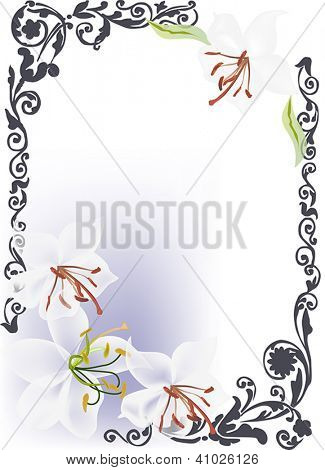 frame with white lily flowers on light background