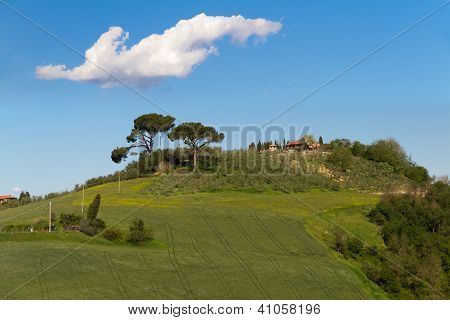 Tuscany farmhouse with cypress trees, Crete Senesi, Siena, Italy